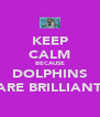 KEEP CALM BECAUSE DOLPHINS ARE BRILLIANT - Personalised Poster A4 size