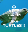 KEEP CALM because... I like  TURTLES!!! - Personalised Poster A4 size