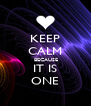 KEEP CALM  BECAUSE IT IS ONE - Personalised Poster A4 size