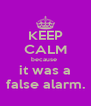 KEEP CALM because  it was a false alarm. - Personalised Poster A4 size