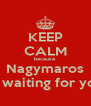 KEEP CALM because Nagymaros is waiting for you - Personalised Poster A4 size