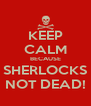 KEEP CALM BECAUSE SHERLOCKS NOT DEAD! - Personalised Poster A4 size