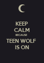 KEEP CALM BECAUSE  TEEN WOLF  IS ON - Personalised Poster A4 size
