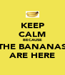 KEEP CALM BECAUSE THE BANANAS ARE HERE - Personalised Poster A4 size