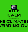 KEEP CALM BECAUSE THE CLIMATE IS WEIRDING OUT - Personalised Poster A4 size