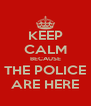 KEEP CALM BECAUSE THE POLICE ARE HERE - Personalised Poster A4 size