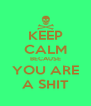 KEEP CALM BECAUSE YOU ARE A SHIT - Personalised Poster A4 size