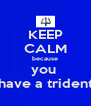 KEEP CALM because you  have a trident - Personalised Poster A4 size