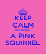 KEEP CALM BECOME  A PINK SQUIRREL - Personalised Poster A4 size
