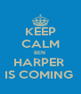 KEEP CALM BEN  HARPER  IS COMING  - Personalised Poster A4 size