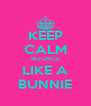 KEEP CALM BOUNCE LIKE A BUNNIE - Personalised Poster A4 size