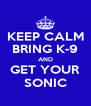 KEEP CALM BRING K-9 AND GET YOUR SONIC - Personalised Poster A4 size