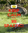 KEEP CALM BUT BE SPASTIC! - Personalised Poster A4 size