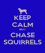 KEEP CALM BUT CHASE SQUIRRELS - Personalised Poster A4 size