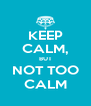 KEEP CALM, BUT NOT TOO CALM - Personalised Poster A4 size