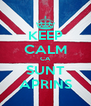 KEEP CALM CA SUNT APRINS - Personalised Poster A4 size