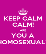 KEEP CALM CALM! ARE YOU A HOMOSEXUAL? - Personalised Poster A4 size
