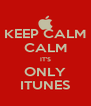 KEEP CALM CALM IT'S ONLY ITUNES - Personalised Poster A4 size