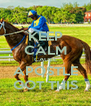 KEEP CALM CAUSE APOSTLE GOT THIS - Personalised Poster A4 size