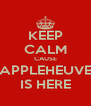 KEEP CALM CAUSE APPLEHEUVE IS HERE - Personalised Poster A4 size