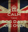 KEEP CALM 'cause DOG DAYS ARE OVER - Personalised Poster A4 size