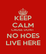 KEEP CALM CAUSE DONT  NO HOES LIVE HERE - Personalised Poster A4 size
