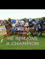 KEEP CALM CAUSE HE REMAINS A CHAMPION - Personalised Poster A4 size