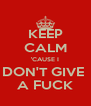 KEEP CALM 'CAUSE I DON'T GIVE  A FUCK - Personalised Poster A4 size