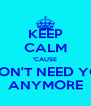 KEEP CALM 'CAUSE I DON'T NEED YOU ANYMORE - Personalised Poster A4 size
