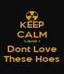 KEEP CALM Cause I Dont Love These Hoes - Personalised Poster A4 size