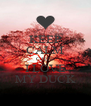 KEEP CALM CAUSE I LOVE MY DUCK - Personalised Poster A4 size