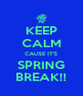 KEEP CALM CAUSE IT'S SPRING BREAK!! - Personalised Poster A4 size