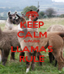 KEEP CALM CAUSE LLAMAS RULE - Personalised Poster A4 size