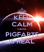 KEEP CALM cause PIGFARTS IS REAL - Personalised Poster A4 size