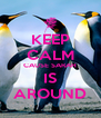 KEEP CALM CAUSE SARAH IS AROUND - Personalised Poster A4 size