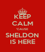 KEEP CALM 'CAUSE SHELDON IS HERE - Personalised Poster A4 size