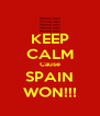 KEEP CALM Cause SPAIN WON!!! - Personalised Poster A4 size
