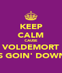 KEEP CALM CAUSE VOLDEMORT IS GOIN' DOWN - Personalised Poster A4 size