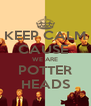 KEEP CALM CAUSE  WE ARE POTTER HEADS - Personalised Poster A4 size
