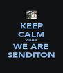 KEEP CALM 'cause WE ARE SENDITON - Personalised Poster A4 size
