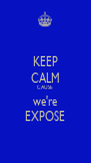 KEEP CALM CAUSE we're EXPOSE - Personalised Poster A4 size