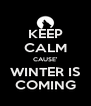 KEEP CALM CAUSE' WINTER IS COMING - Personalised Poster A4 size