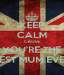 KEEP CALM CAUSE YOU'RE THE BEST MUM EVER - Personalised Poster A4 size