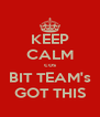 KEEP CALM cos BIT TEAM's GOT THIS - Personalised Poster A4 size