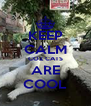 KEEP CALM COZ CATS ARE COOL - Personalised Poster A4 size