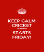 KEEP CALM CRICKET TRAINING STARTS FRIDAY! - Personalised Poster A4 size