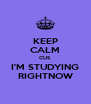 KEEP CALM CUS I'M STUDYING RIGHTNOW - Personalised Poster A4 size