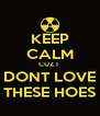 KEEP CALM CUZ I  DONT LOVE THESE HOES - Personalised Poster A4 size