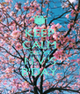 KEEP CALM CUZ IT'S N.V.'S B'DAY - Personalised Poster A4 size