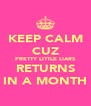 KEEP CALM CUZ PRETTY LITTLE LIARS RETURNS IN A MONTH - Personalised Poster A4 size